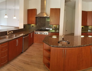 Luxury kitchen with wood, stainless and granite accents